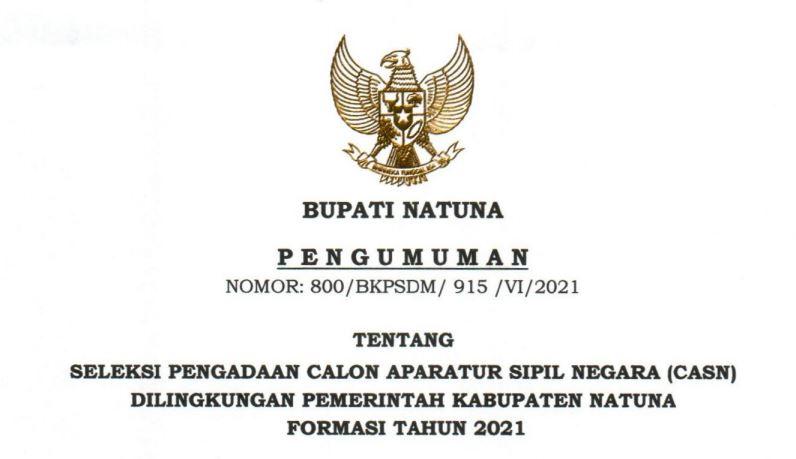 Download Formasi CPNS 2021 Kab. Natuna, PPPK Guru dan Non Guru di SSCN.BKD.GO.ID